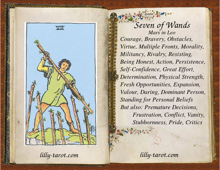 Meaning of Seven of Wands